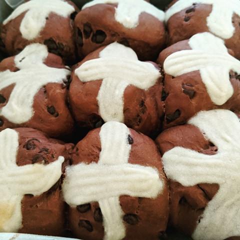 Chocolate Choc Chip Hot Cross Buns